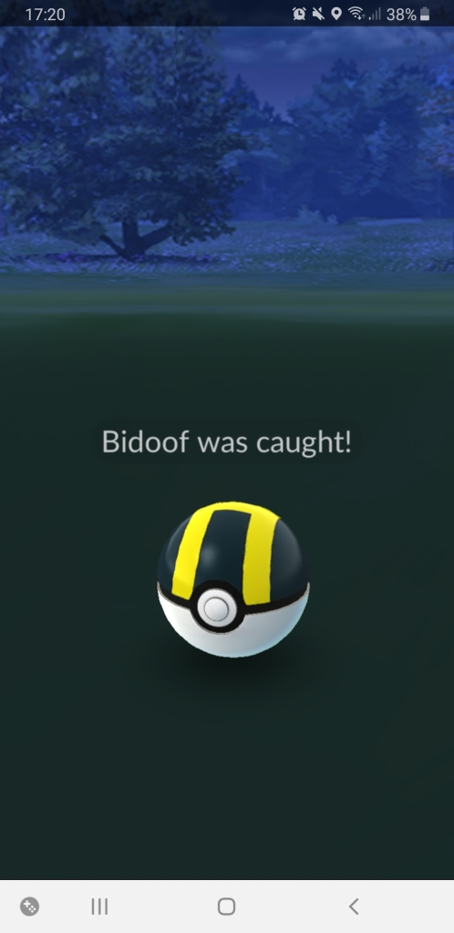 "Screenshot of Pokemon Go mobile game. The screen shows a black and yellow pokeball with the caption, ""Bidoof was caught!"""
